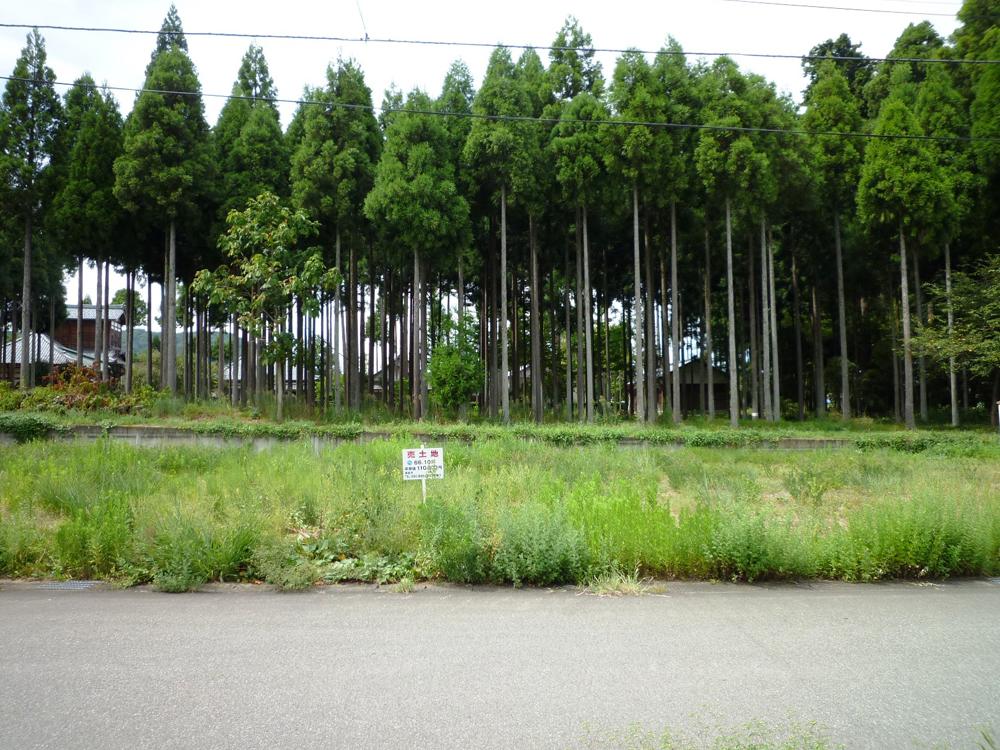 12ikeizumi23-1-22
